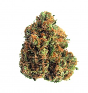 Menu - Flower - Indica - King Louis XIII