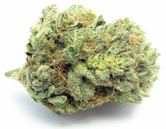 Westminster MMJ Delivery Company
