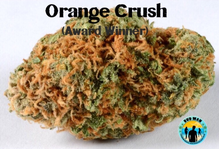Orange Crush Dry Herbs – MMJ Delivery