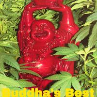buddha's best weed/marijuana