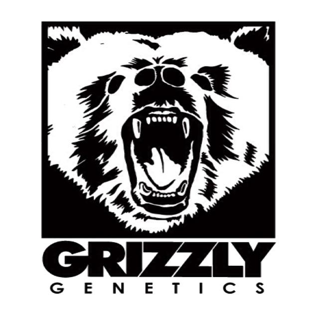 Grizzly Genetics - Bud Man OC