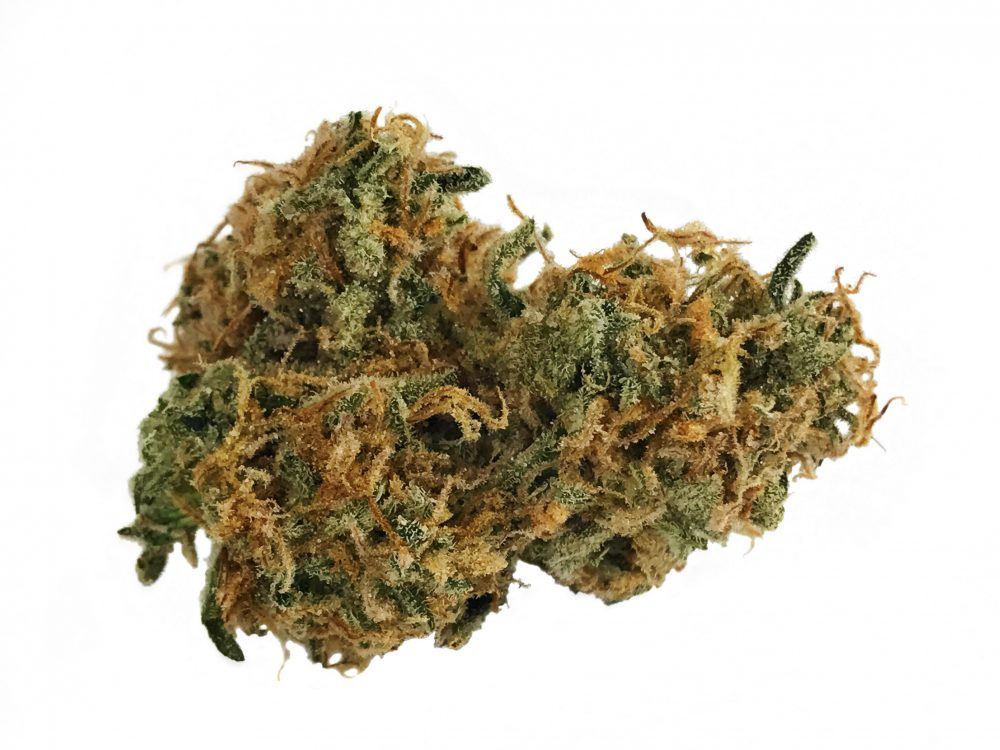 medical marijuana the controversial herb Marijuana has always generated controversy once demonized, the herb is today glorified - mass media, movies, tv shows, music, everyone seems to be playing a part in glorifying recreational.