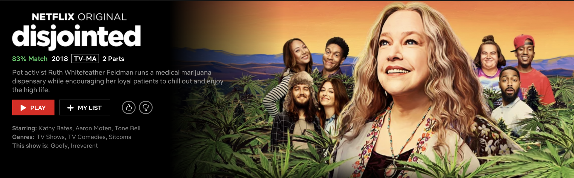 Disjointed – Netflix Original