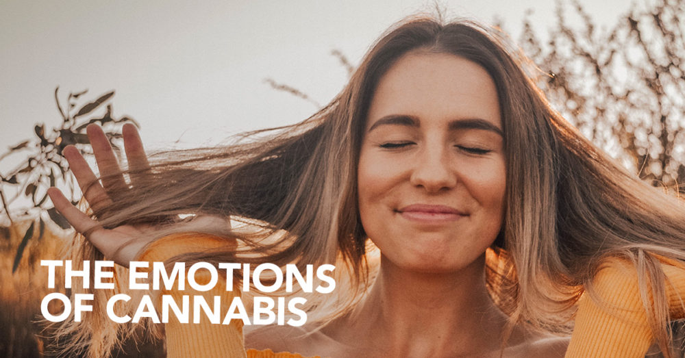 Emotions of Cannabis
