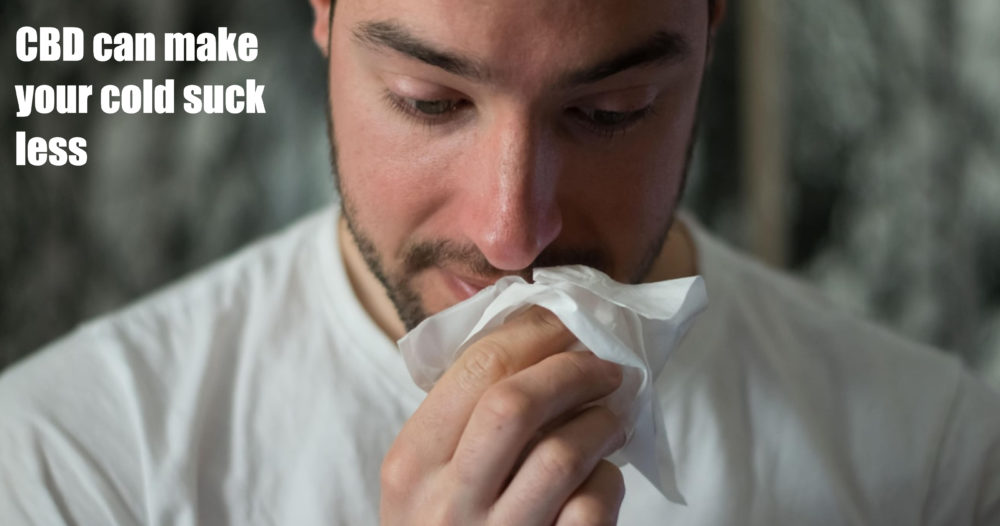 cbd as cold remedy