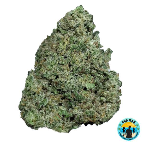 Super Sour Diesel – Bud Man Orange County Premium Marijuana Delivery Dispensary Weed Cannabis
