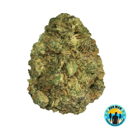 Jungle Juice Marijuana Weed strain