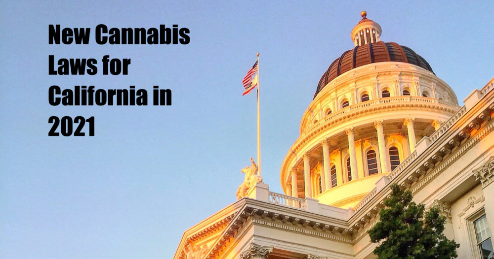 new california marijuana laws
