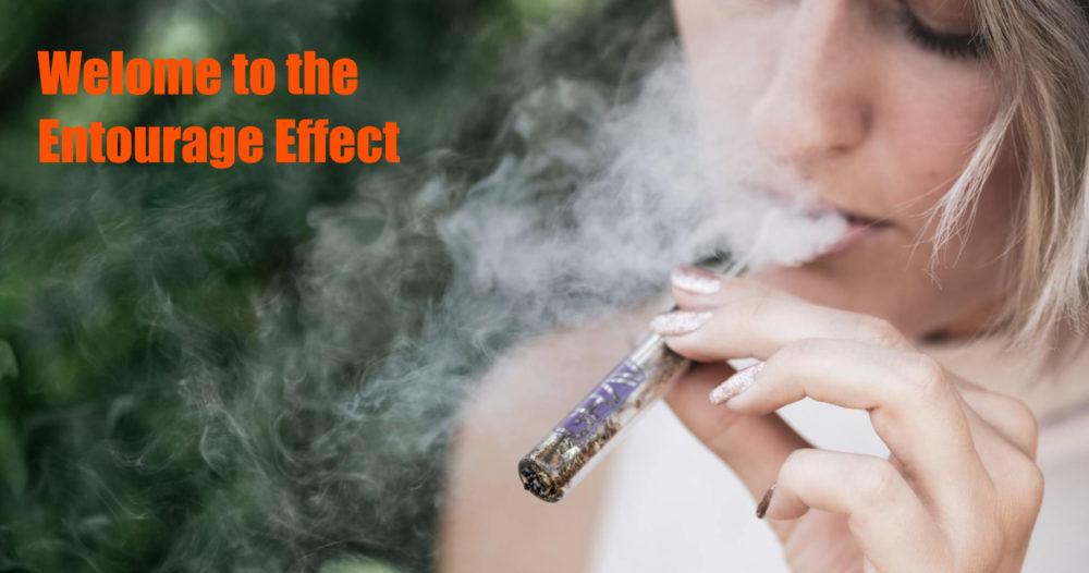 marijuana entourage-effect