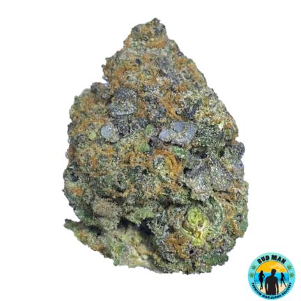 Bubble Gum - Bud Man Orange County Premium Marijuana Delivery Dispensary